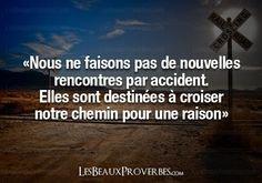 L'amour.....