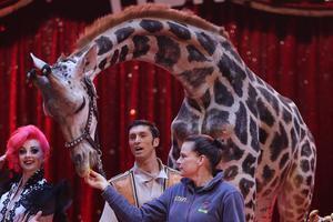Le Festival du cirque de Monaco maintenu malgré la colère des militants de la cause animale