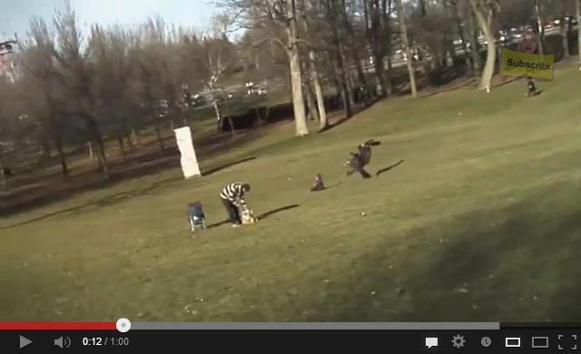 Dans un parc à Montréal au Québec, un aigle royal attaque et tente d'emporter un enfant en l'agrippant avec ses serres et ses puissantes pattes.  Vidéo : http://bit.ly/108qAIK