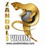 Page Zandoli Videoz Facebook - J'AIME