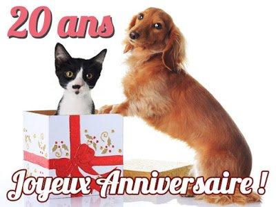 SMS d'amour 2017 - SMS d'amour message: Message anniversaire humour 20 ans