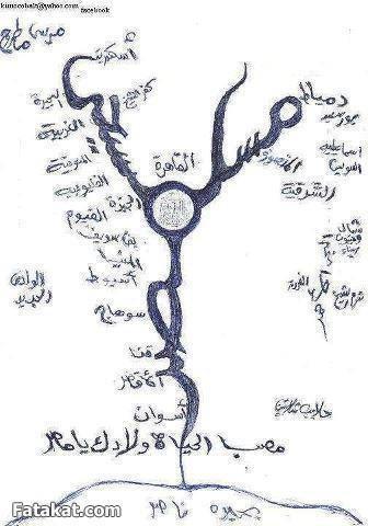 إسلاميات: فضل ابن العاص على أقباط مصر