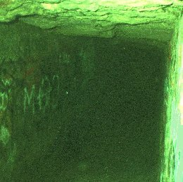 Les Catacombes de Paris - Webcam
