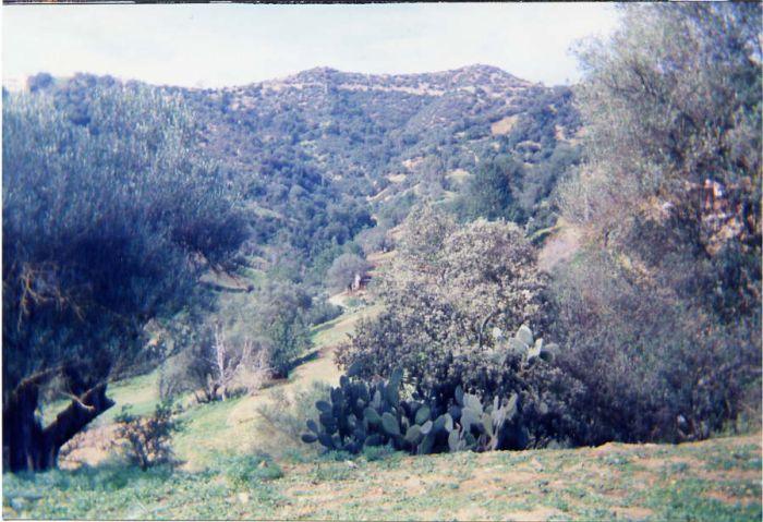 Vue des deux collines à partir de Taremant
