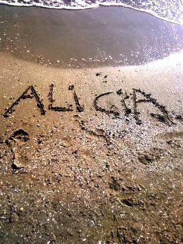 La mer :)