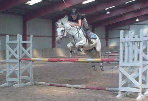 J'aime cett' photo =P. Mon poney ♥