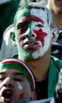 lee algerien rassa