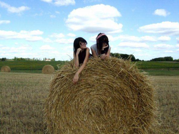 Rose & moi (: