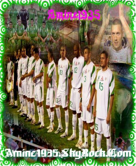 Les Star D'Algerie