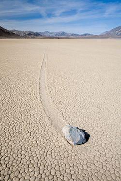 les pierres vivantes de la vallée de la mort