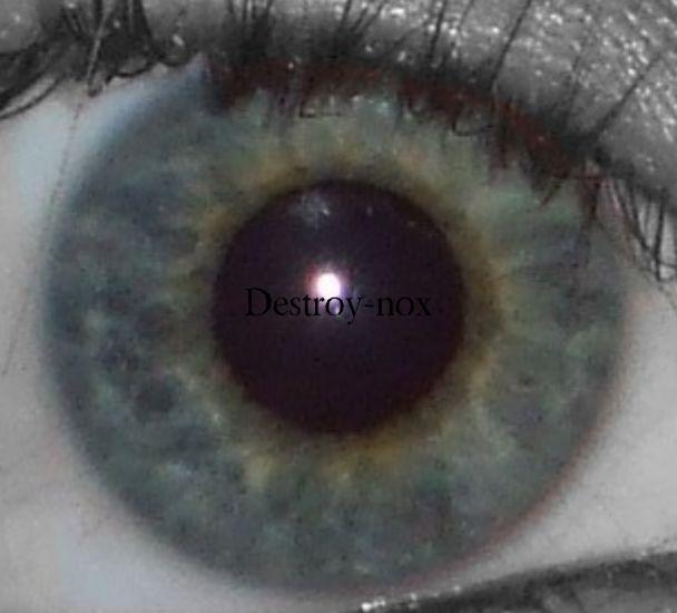 Mon Oeil =P