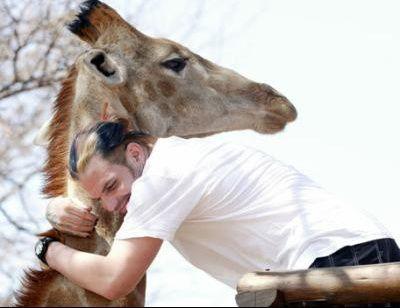 jeff et girafe