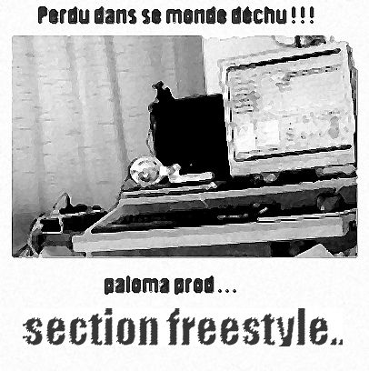 Mon Concepte! Section Freestyle!