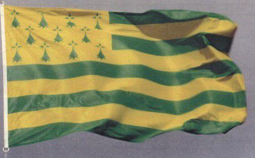 Breizh jaune et verte!
