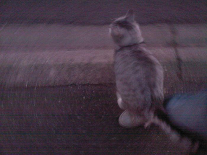 Dans la rue , le matin 7heure