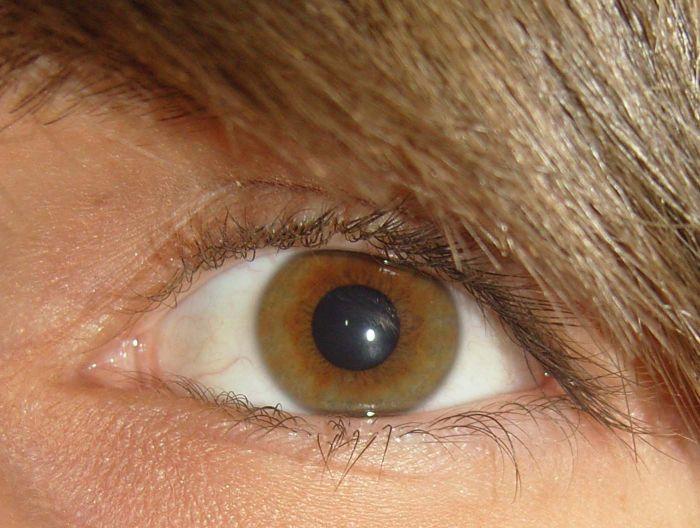 Eyes !