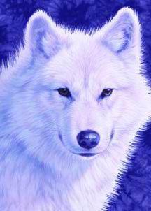 loup blanc comme la neige - totemtanka - Skyrock.com