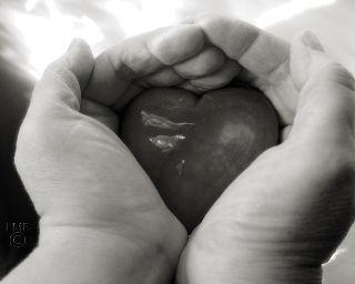 envi de prendr mn coeur et le détruir pr ne + rien ressentir