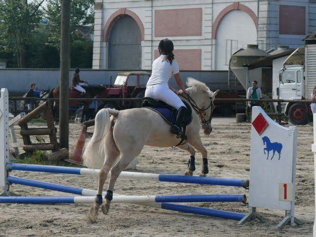 Pony (':