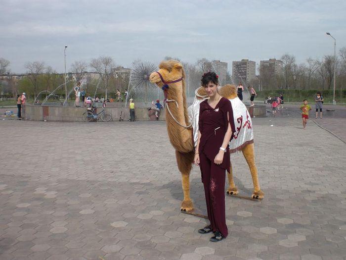 ana va kamel