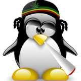 un pingouin ki connait la vie