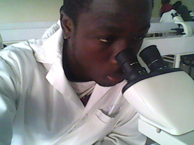 regarde de fauve dans le microscope