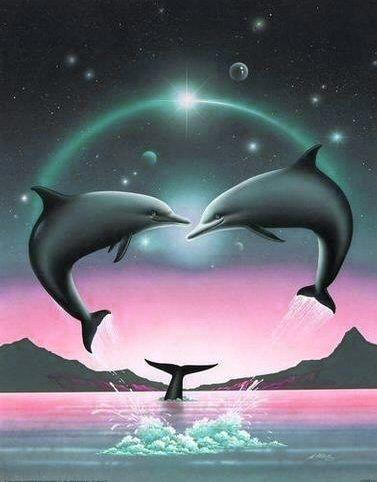 Les dauphins!