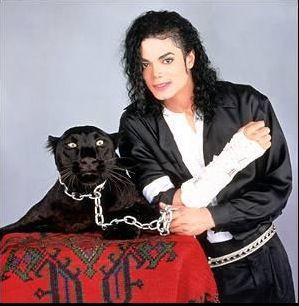 mike et la panthère noire