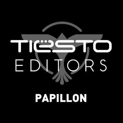 Editors - Papillon (Tiësto Remix)