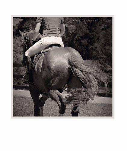 L'équitation...♥