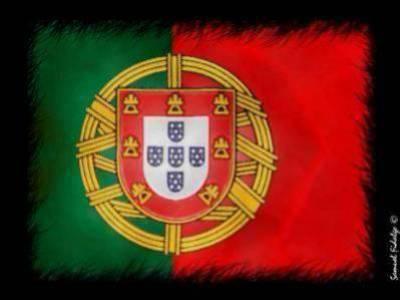 viva portugal !!