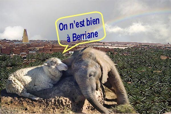 Berriane Berriane Berriane Berriane Berriane  ville paisible