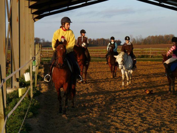 Horse Ball :D
