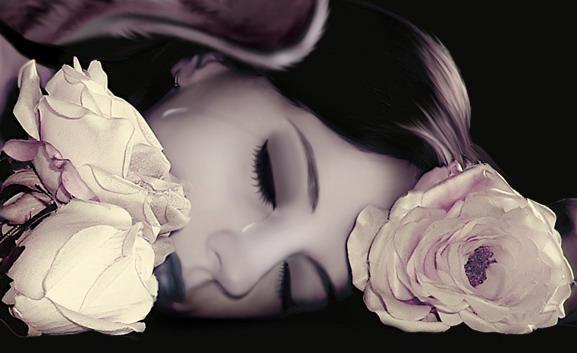 L'apaisement  d'une rose