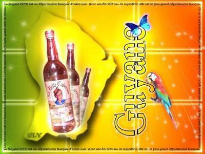 guyana represente