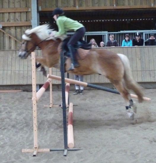 Pony et Moi
