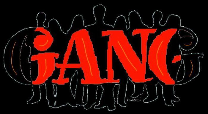 ms gang