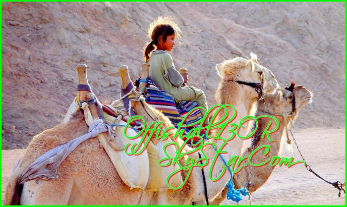 La Cousine sur le chameau , De Tonton du bled * mdrrr