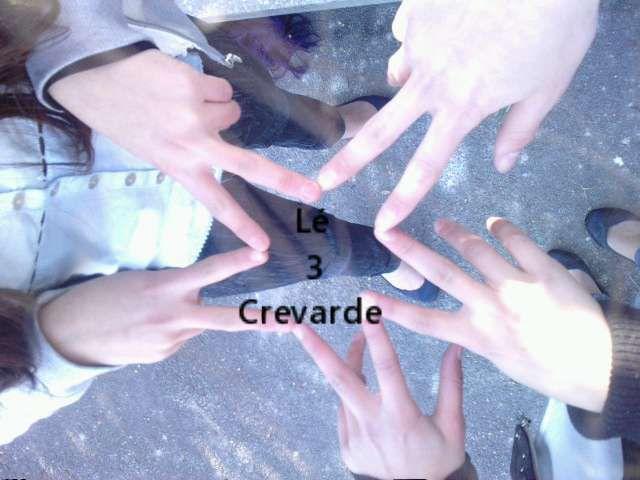 leii 3 crevardes ♥