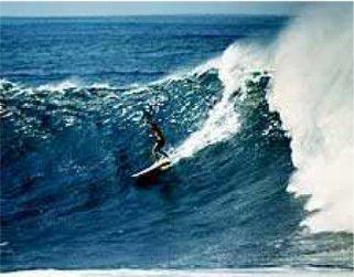 Mickey Dora - La légende du surf