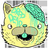 Kitty Brainz *.*