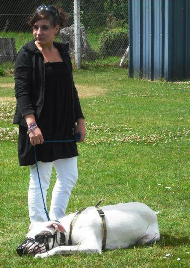 Melle Gwen & Son dogue argentin
