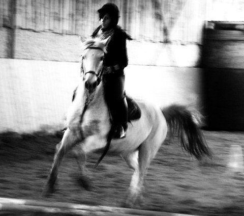Vega et moi en reprise, après qu'un poney lui ai fait peur.