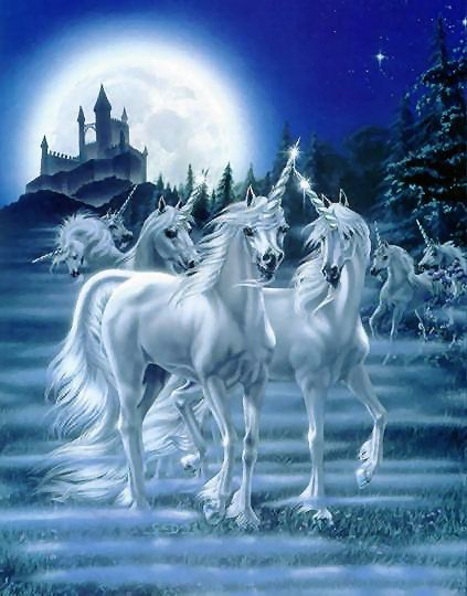 Le clan des licornes