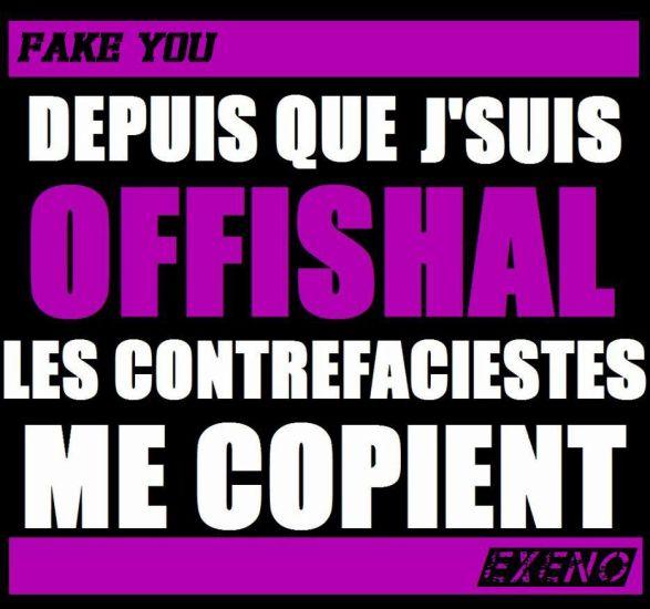 Mon SLOGAN (bientot le T-SHiiRT les amiis !!!) FAKE YOU !