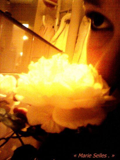 J'aime les fleurs ;)