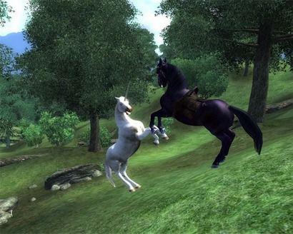 licorne et cheval noir qui se batte