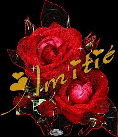 la rose sur l'étre