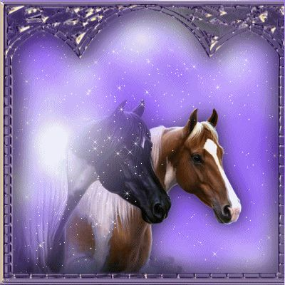 chevaux magic