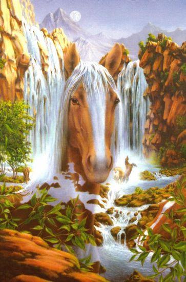 cheval des plaines